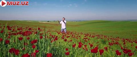 Ulug'bek Rahmatullayev - Alvon lolalar